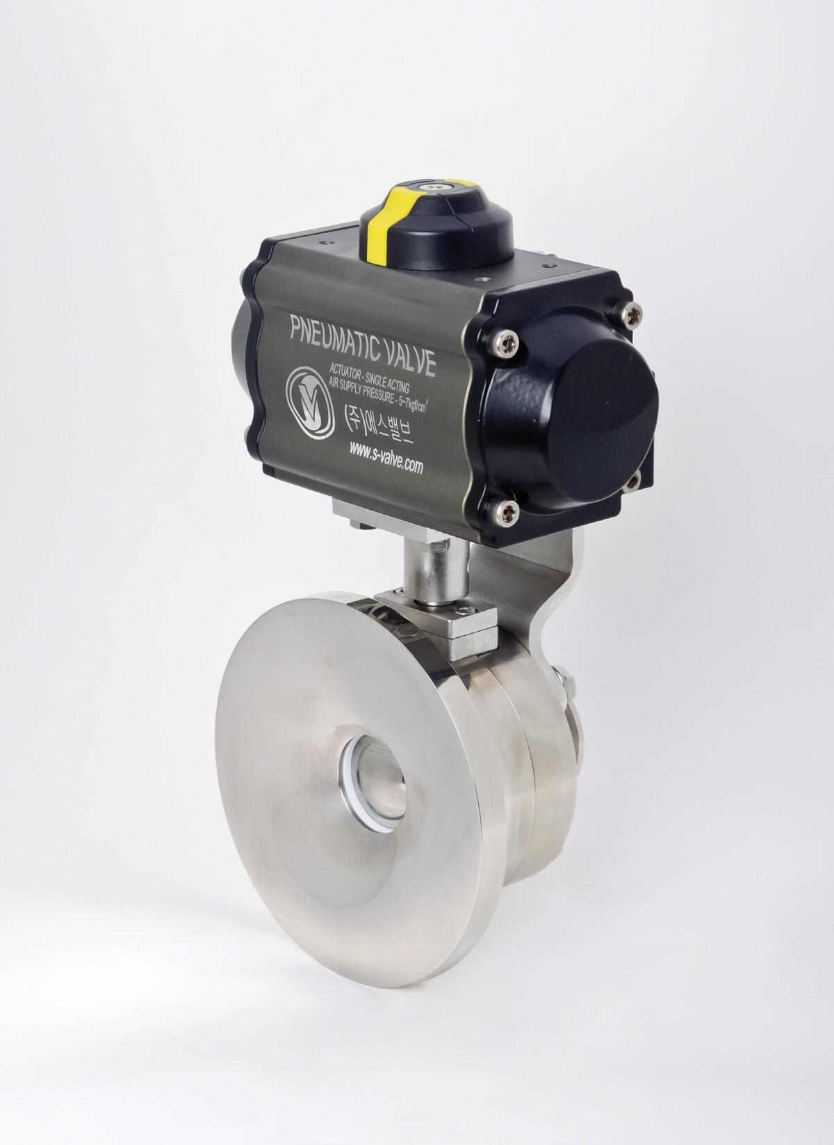 S-valve_0093.jpg