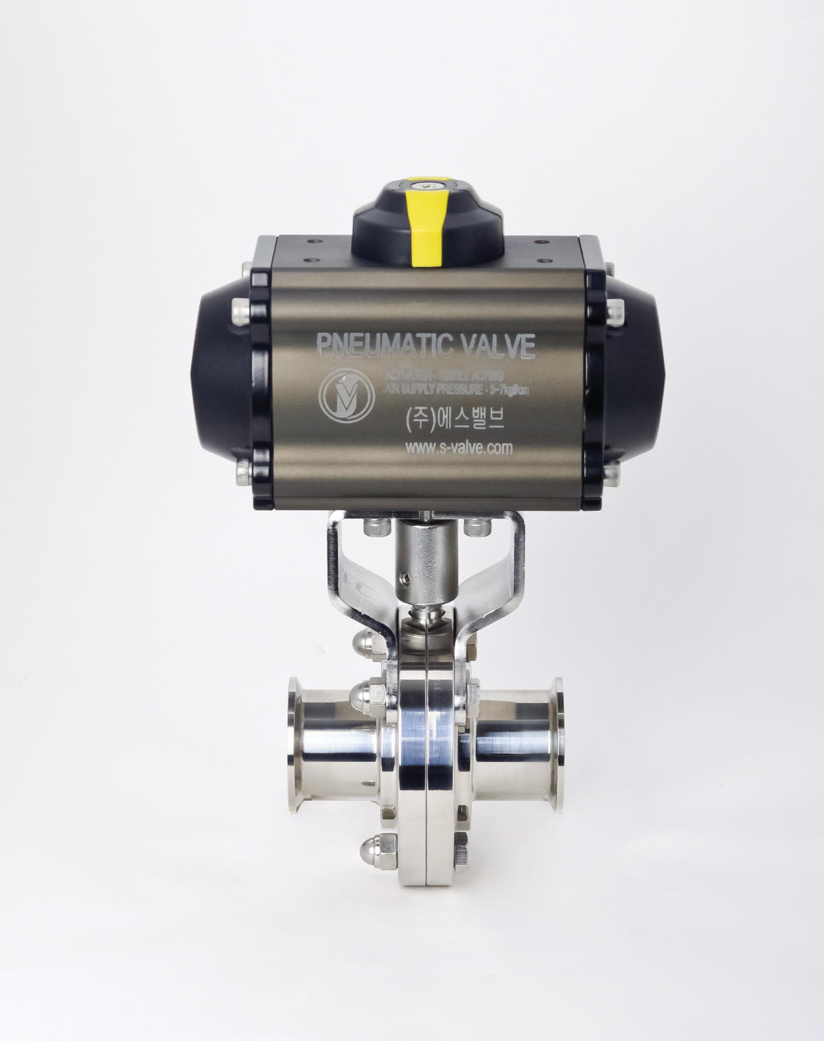 S-valve_0074.jpg