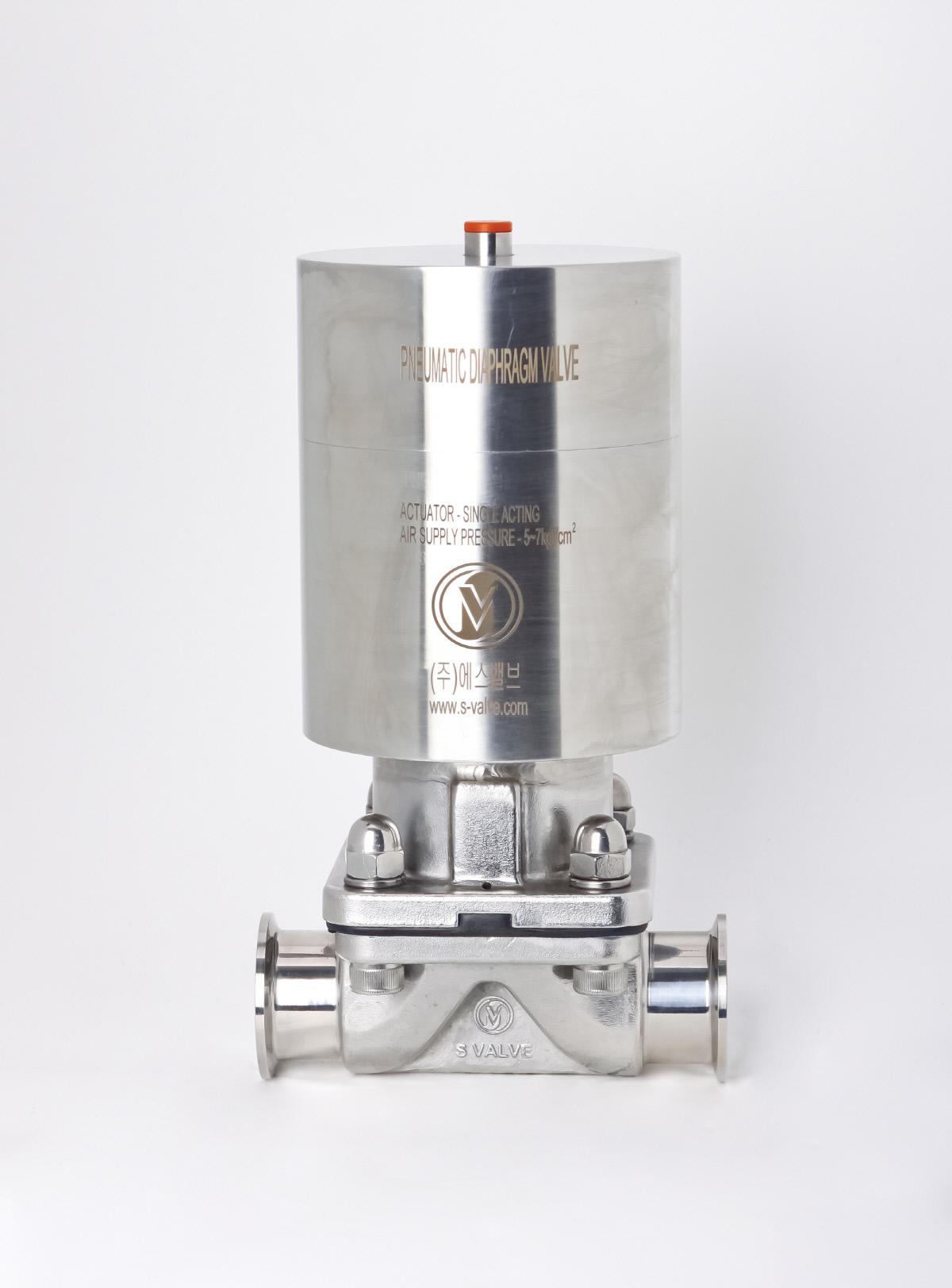 S-valve_0023.jpg