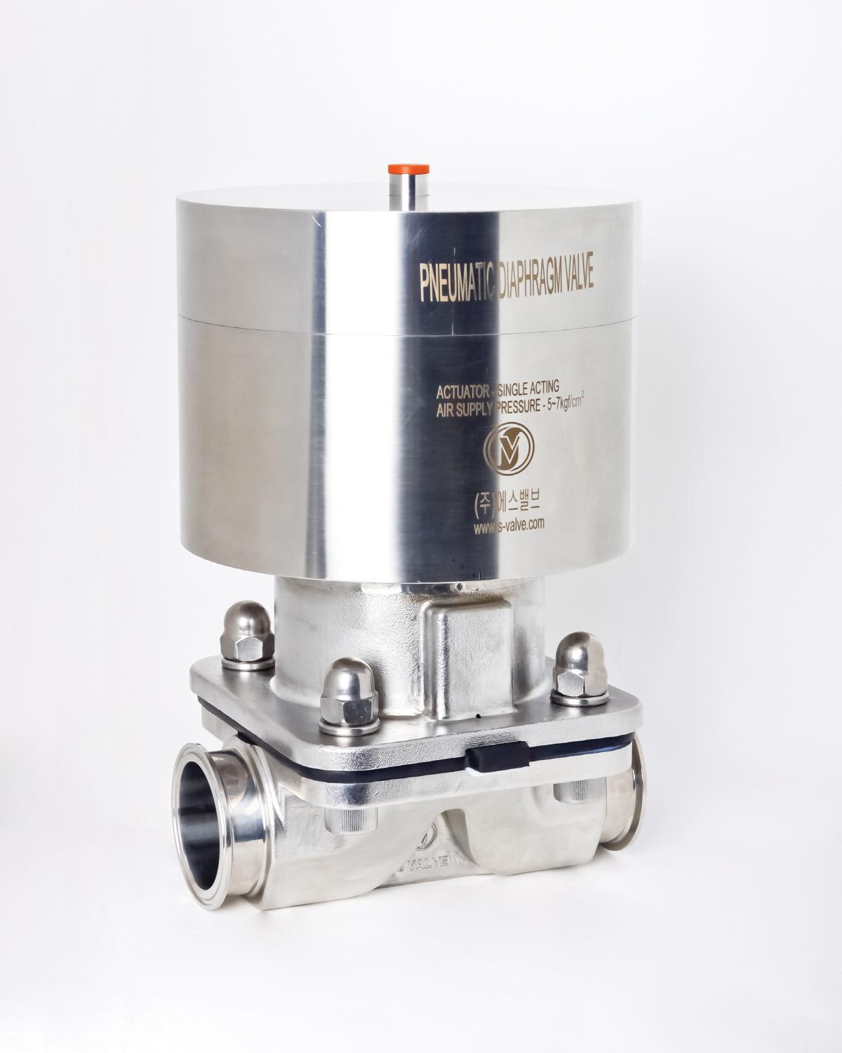 S-valve_0020.jpg
